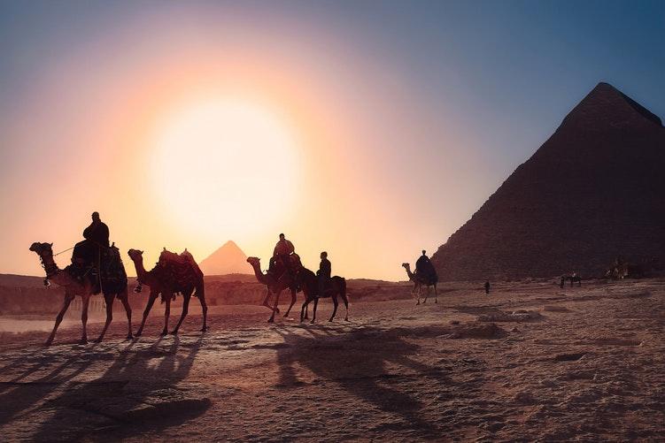 What is a digital agency & IT companies in Egypt