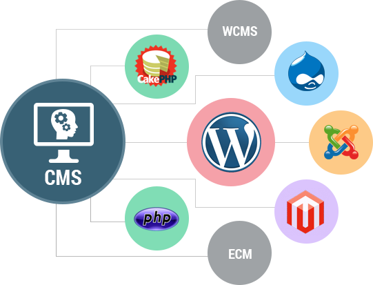 What is web content management system WCMS and how web content management systems works? how can you use a web content management system in the business, and every example of web content management system in one post, Learn all you need to know about the easy and least cost.